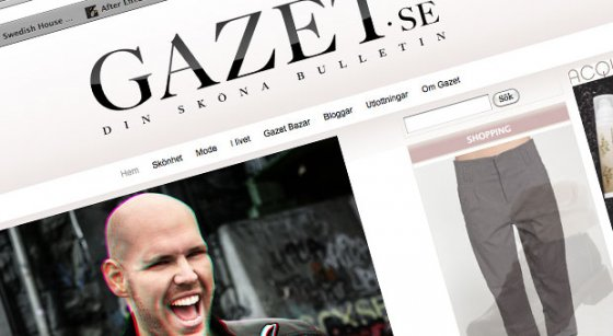 Interview for Swedish Gazet.se